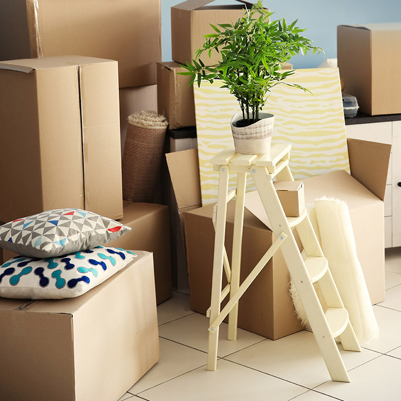 Where to find free cardboard boxes