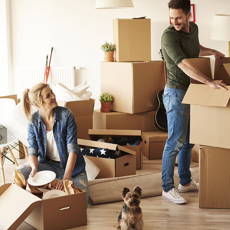 A young couple with a dog packing up a home full of storage boxes