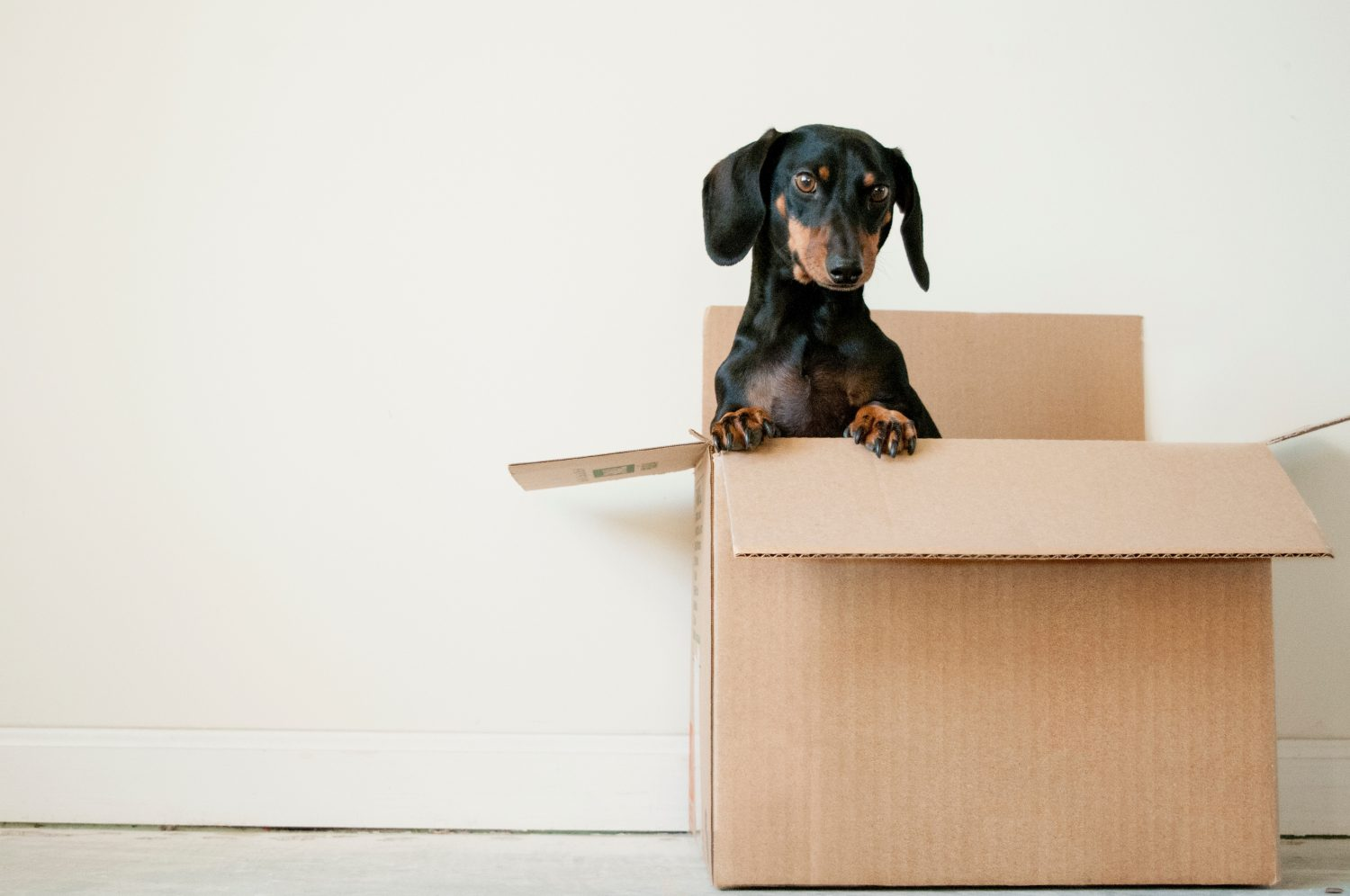 15 Items You Should Not Put In Self Storage Units 3d